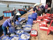 Seafood exports fetch 3.65 billion USD in seven months