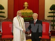 Comprehensive strategic partnership to fuel VN-India development