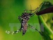 Thai ministry urges citizens not to panic over Zika virus
