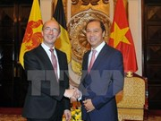 Vietnam, Wallonie-Bruxelles accelerate pace of joint projects