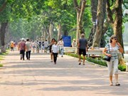 Hanoi's 936 streets to feature natural stone
