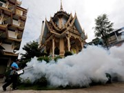 Thailand considers free Zika tests for all pregnant women