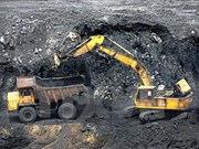 Coal import needed for economic growth, energy security: official