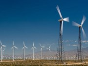 US rescinds administrative review on VN wind towers
