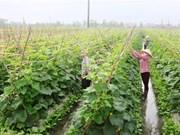 Growing demand for organic food
