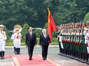 Irish President wishes to foster ties with Vietnam