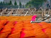 Vietnam's century-old incense-making village