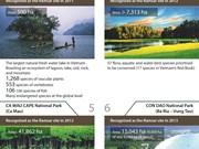 Eight world Ramsar sites in Vietnam