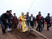 Doi Son ploughing festival prays for bumper crops