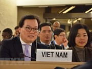 Vietnam will work harder to ensure human rights: ambassador