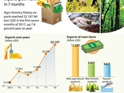 Agro-forestry-fishery exports grow 7.8 percent in 7 months