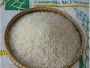 Cambodia's rice production faces slight fall