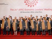 Vietnam receives support in hosting APEC Year 2017: Deputy PM