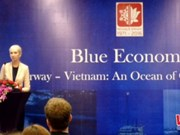 Vietnam, Norway look to optimise maritime economic cooperation