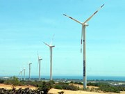 First phase of Phu Lac Wind Power Plant inaugurated
