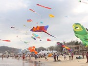 Ba Ria-Vung Tau to host int'l kite festival