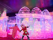 HCM City: Ice sculpture exhibition opens at Dam Sen Park