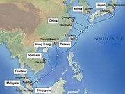Asia's largest-capacity cable line to become operational