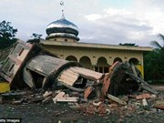 Indonesia earthquake: Initial casualty report 20 deaths