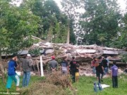 No Vietnamese killed, injured in Indonesia earthquake