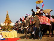 Lao Elephant Festival to take place in Xayaboury