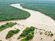 Sediment decline hurting Vietnam's rivers