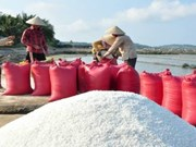 Quality salt production zone planned