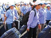 Internal migration survey 2015 in Vietnam announced