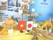 Vietnam – Japan cultural exchange opens