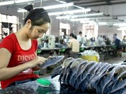HCM City guarantees loans for SMEs