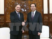 Human resources development key for Vietnam's growth: President