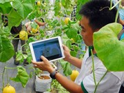 Experts welcome shift in credit policy for hi-tech agriculture