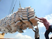 Vietnam earns 2.2 billion USD from rice export this year