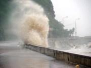 Climate change a major health concern for Vietnam