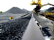Coal piles up as domestic firms prefer imports