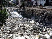 Environment ministry to increase inspections