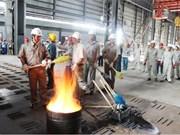 Vietnam giants post record profits
