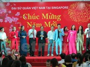 Vietnamese expats in Singapore gather to celebrate Tet