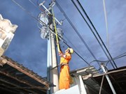Kien Giang: more islanders connected to national power grid