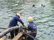 Repair work on disrupted submarine optic cables completed