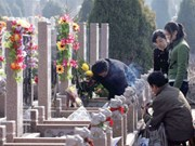 Tomb-sweeping tradition observed in Vietnam