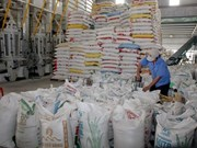 Rice exports decline in January