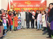 Vietnamese in Cambodia, Egypt celebrates traditional New Year
