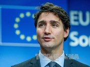 Canadian Prime Minister congratulates Vietnamese on Tet