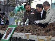 Thailand seizes three tonnes of pangolin scales