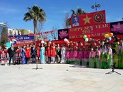 Vietnamese people in Cyprus celebrate Tet