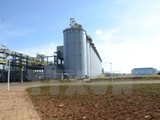 Alumina plant expected to stimulate Dak Nong's economy