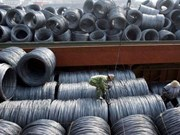Vietnam faces strange steel shortage
