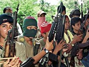 Philippines: Defence Minister open to peace talks with rebels