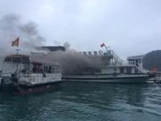 Quang Ninh suspends tourist boat fleet after fire